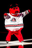 Rockford IceHogs - AHL Affiliate of the Chicago Blackhawks